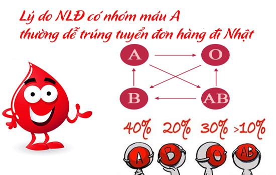 Nhóm máu nào dễ trúng tuyển đơn hàng đi nhật