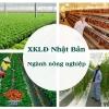 Top 10 đơn hàng nông nghiệp Nhật Bản tốt